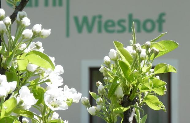 фото Garni Wieshof изображение №14