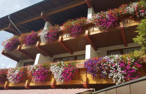фотографии отеля Hotel Gasthof Mitteregger  изображение №15