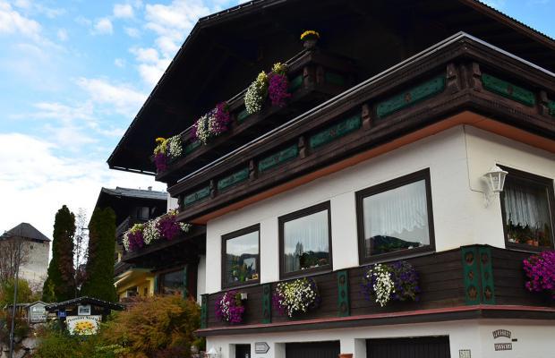 фотографии Pension Austria изображение №8