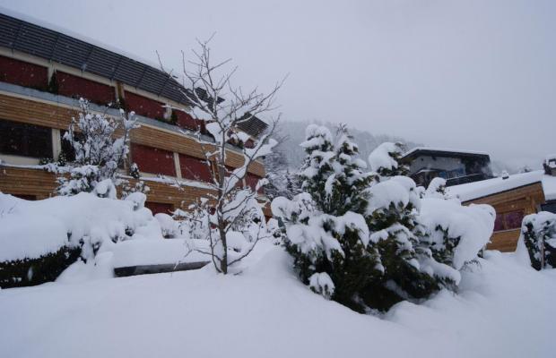 фото Sonnenheim изображение №38