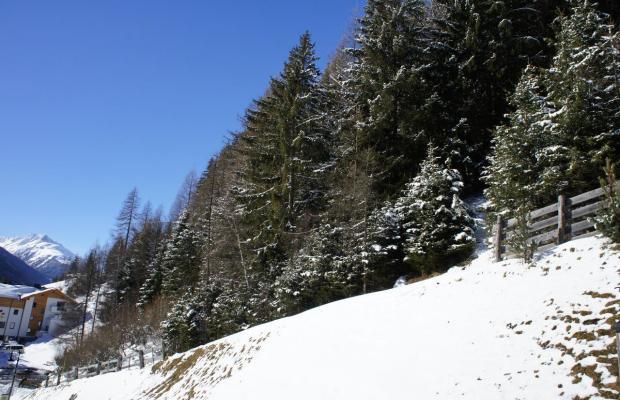 фотографии Alpinea изображение №32