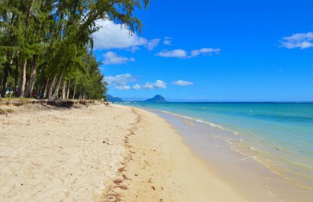 фотографии Paradya Beach Apartments изображение №16