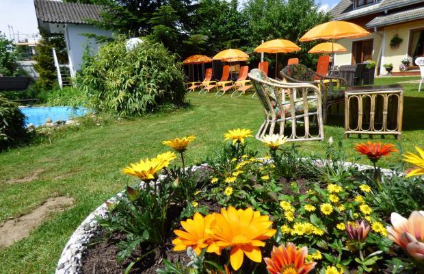 фото отеля Villa Dorothy изображение №21