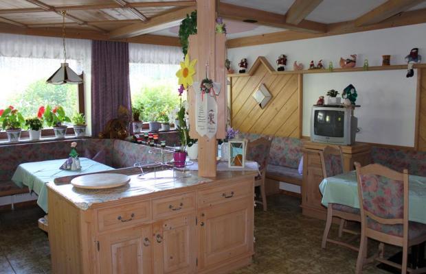 фотографии Haus Fidelis Riml изображение №24