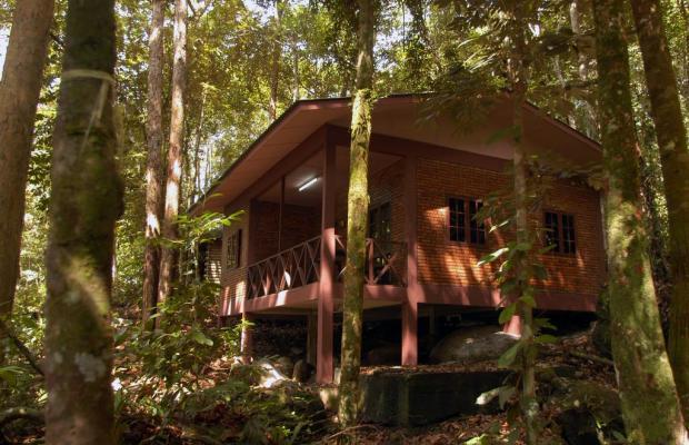 фотографии отеля Permai Rainforest Resort изображение №11