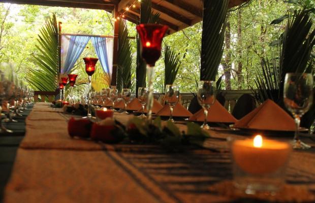 фото отеля Permai Rainforest Resort изображение №9