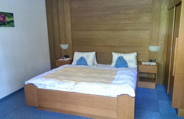 фотографии отеля Fenderhof изображение №7