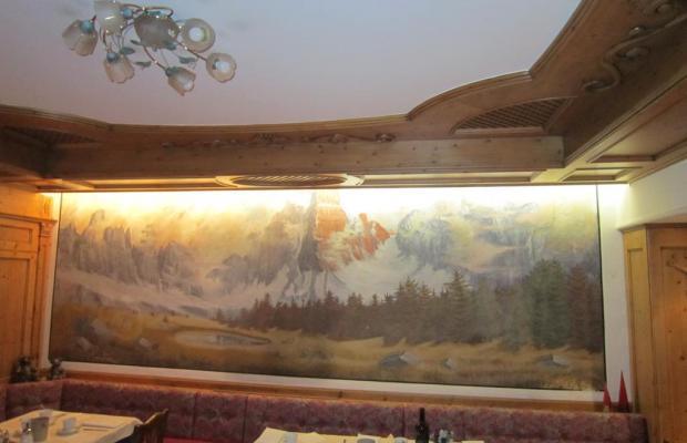 фотографии отеля Hotel Alpina  изображение №11