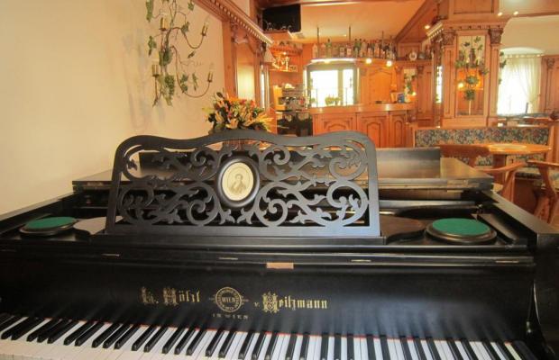 фотографии Hotel Alpina  изображение №4