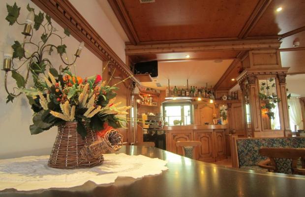 фото Hotel Alpina  изображение №2