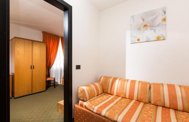 фотографии Hotel Alpina изображение №24