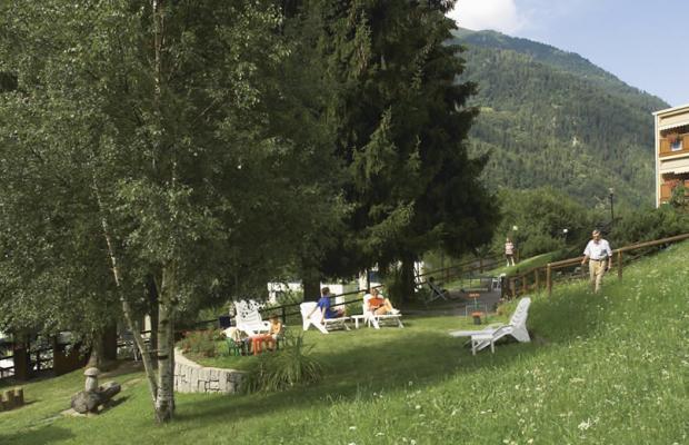 фото Garden изображение №6