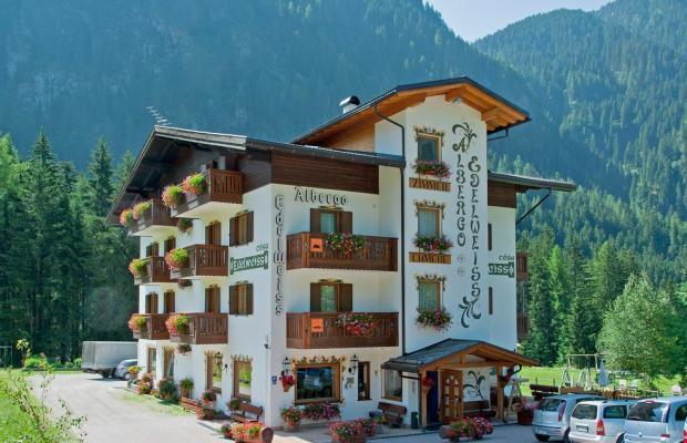 фотографии отеля Cesa Edelweiss изображение №23