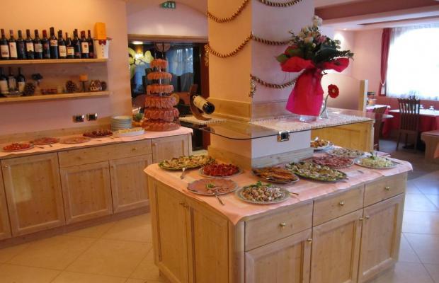 фотографии отеля Hotel Rosalpina изображение №15