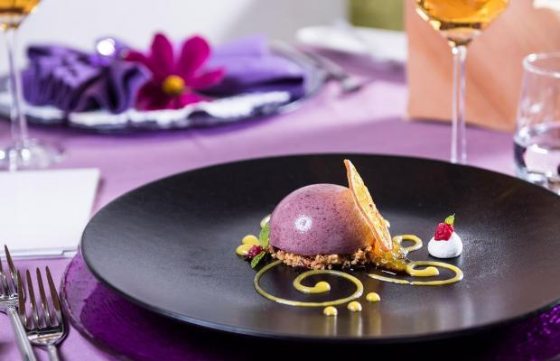 фотографии Hotel Alpin Garden Wellness Resort изображение №52