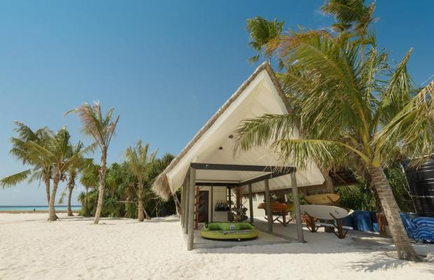 фото Dhigufaru Island Resort изображение №18