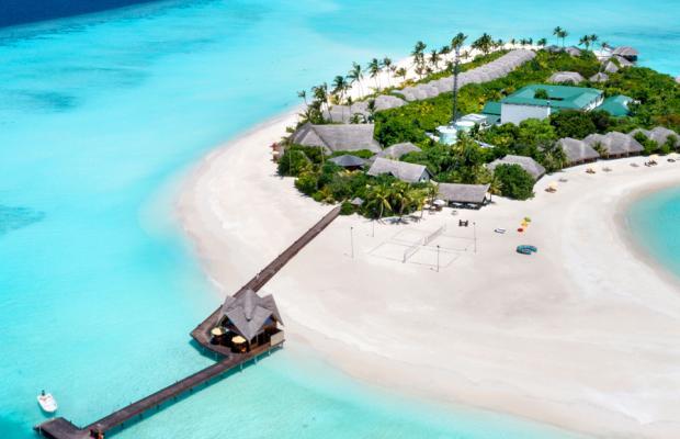 фотографии Dhigufaru Island Resort изображение №4