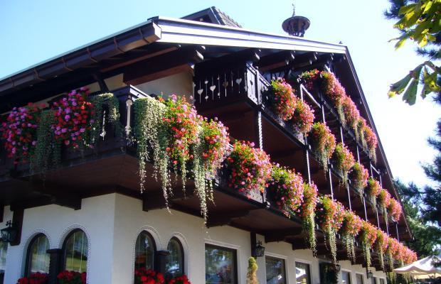 фотографии отеля Hotel Villa Wilma изображение №11