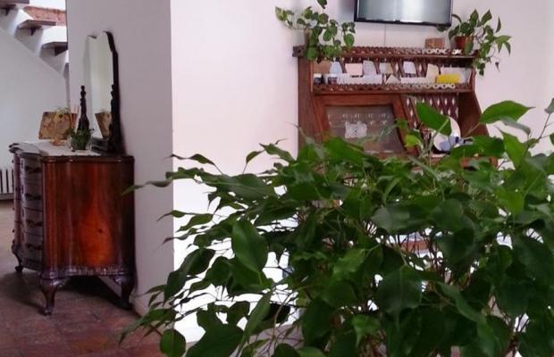 фотографии Gioia House изображение №28