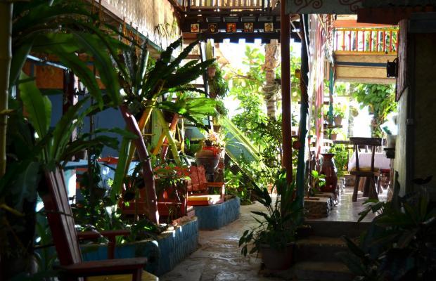 фото Islandfront Cottages изображение №18