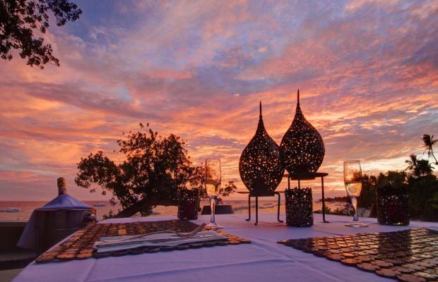 фотографии Amorita Resort изображение №32
