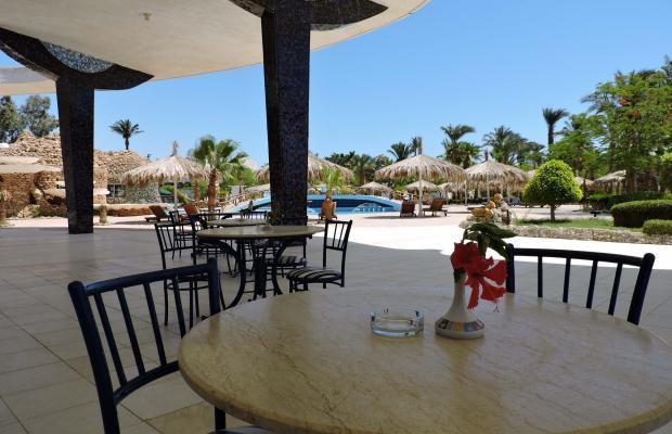 фотографии Coral Resort Nuweiba (ех. Hilton Nuweiba Coral Resort) изображение №32