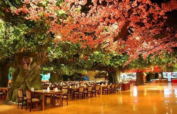 фотографии отеля Sweetland изображение №15