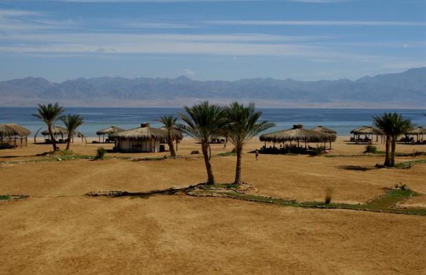 фотографии отеля Swisscare Nuweiba Resort Hotel изображение №19