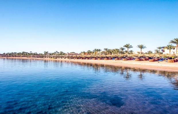 фото отеля Iberotel Makadi Beach изображение №17