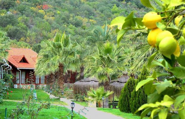 фото Club Sun Village изображение №14
