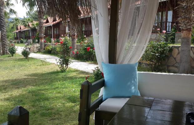 фотографии отеля Club Sun Village изображение №3