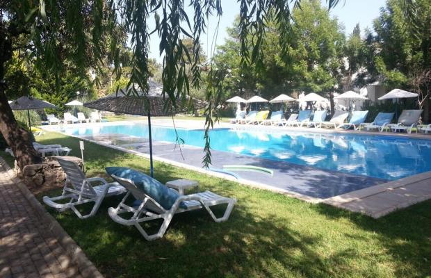 фотографии отеля Muskebi Apart изображение №19