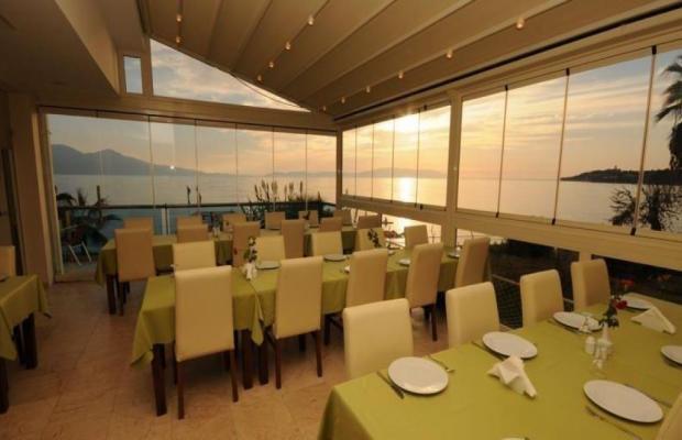 фотографии отеля Coastlight (ex. Polat Beach) изображение №23