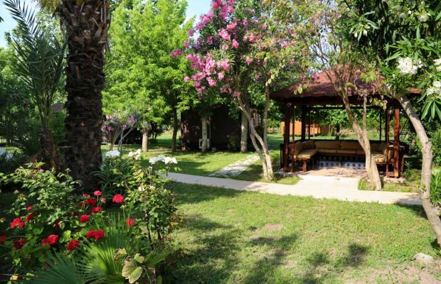 фотографии отеля Adrasan Arkadas изображение №23
