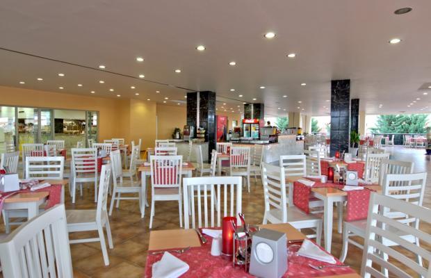 фотографии отеля Family Life Tropical (ex. TT Hotels Tropical; Suntopia Tropical) изображение №3