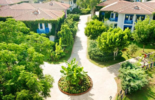 фотографии отеля Belconti Resort изображение №51