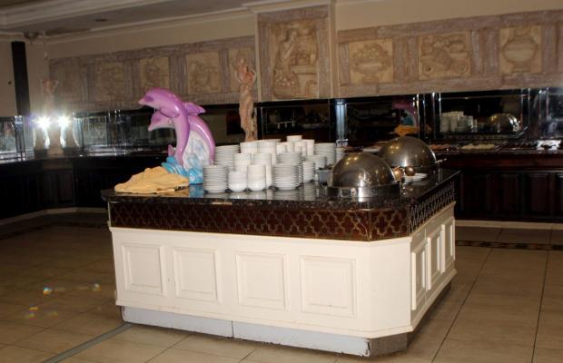 фото Xeno Hotels Sonas Alpina изображение №2