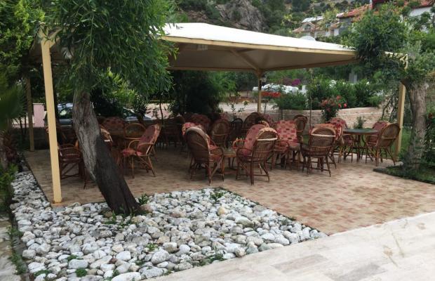 фотографии Zeus Turunc (ex. Pelin Hotel) изображение №16