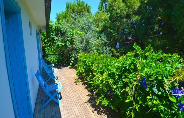 фото Jenny's House изображение №14