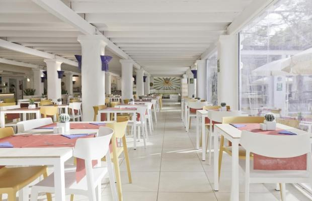 фотографии отеля AzuLine Club Cala Martina Ibiza (ex. AzuLine Club Punta Arabi) изображение №7