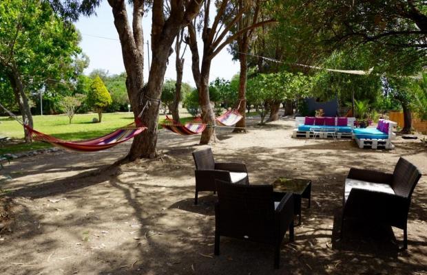 фото отеля Eco Beach And Magic Garden Hotel (ех. Wavehouse; Dennis Beach Studios) изображение №17