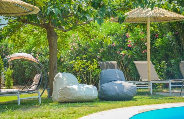 фото отеля Princess Calypso изображение №21