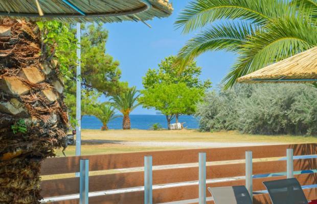 фото отеля Princess Calypso изображение №17