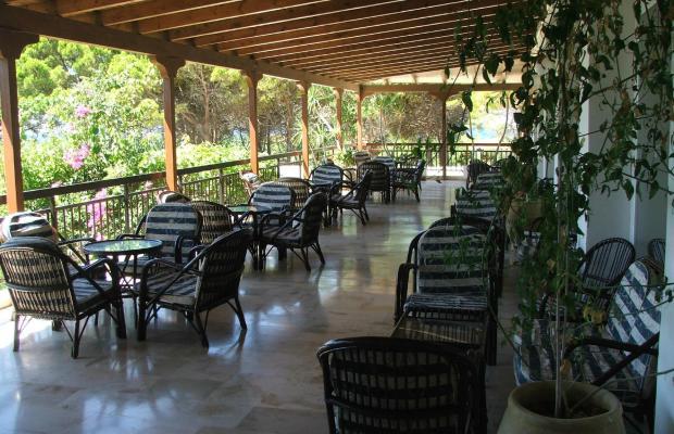 фотографии отеля Irinna изображение №7