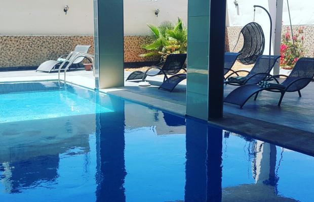 фото отеля Tetra Tree изображение №21